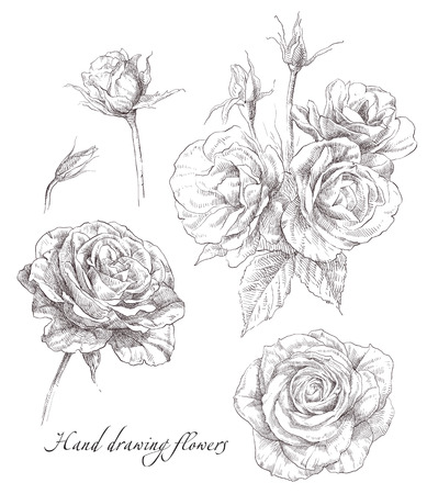 vintage floral pattern: Beauty hand drawn illustration with rose flowers. Illustration