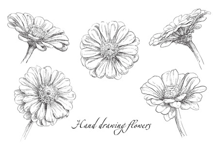silhouette fleur: La main de beauté illustration tirée avec des fleurs. Vecteur.