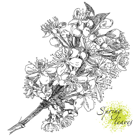 illustration with flowers.