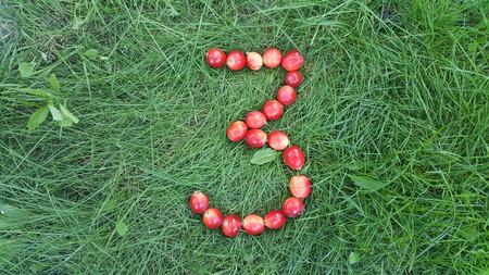 A figura 3 das maçãs do paraíso na grama Foto de archivo - 93318854