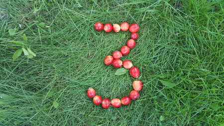 The figure 3 of the paradise apples on the grass