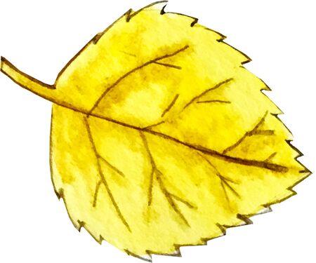 watercolor illustration. yellow birch leaf Banco de Imagens