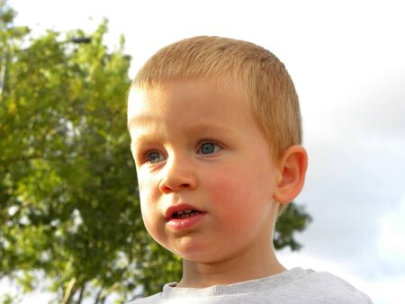 Portrait of a blond boy with gray eyes. A charming three year old boy looks into the distance and smiles. Happy baby