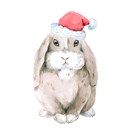 A lop-eared brown rabbit . watercolor. Isolated on white background. Christmas, new year
