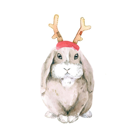 Lop-eared cute domestic rabbit in Christmas horns Rudolph deer. isolated