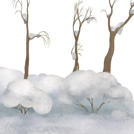 Winter forest landscape. Trees in the snow. Winter fairy tale. White. park