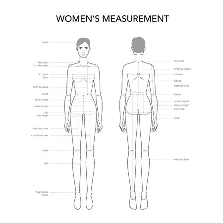 Womens measurements fashion terminology Illustration for lady size chart. 9 head size girl for site and online shop. Human body infographic template with all name of all parts for clothes. Ilustracja