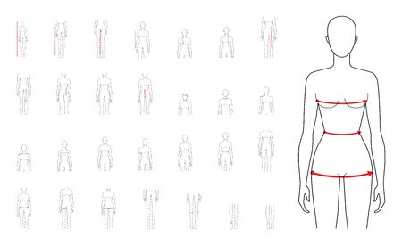 Women to do body measurement fashion Illustration for size chart 29 piece set. 7.5 head size girl for site or online shop. Human body infographic template for clothes.