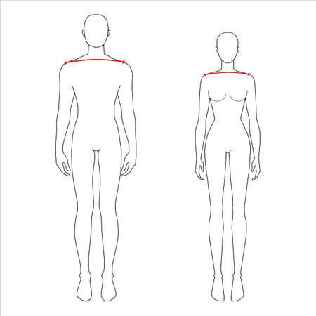 Women and men to do shoulder width measurement fashion Illustration for size chart. 7.5 head size girl and boy for site or online shop. Human body infographic template for clothes.