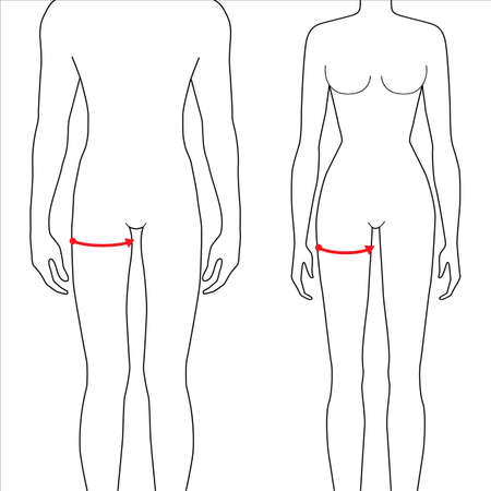Women and men to do max thigh measurement fashion Illustration for size chart. 7.5 head size girl and boy for site or online shop. Human body infographic template for clothes. Illustration