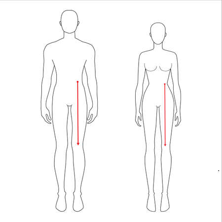 Women and men to do waist to knee measurement fashion Illustration for size chart. 7.5 head size girl and boy for site or online shop. Human body infographic template for clothes.