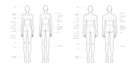 Men and women body parts terminology measurements Illustration for clothes and accessories production fashion 9 head male and female size chart. Human body infographic template