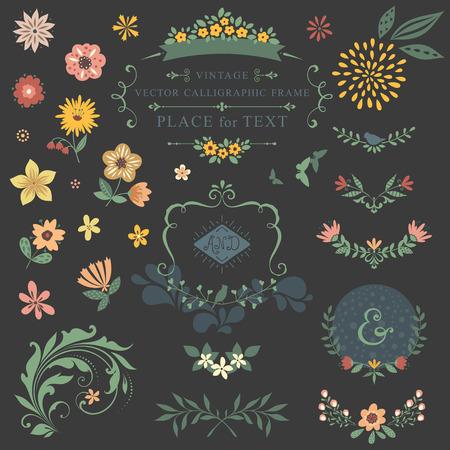 Floral graphic set with swirls, laurels, wreaths, branches, flowers, butterflies, bird and ampersands. Ilustração