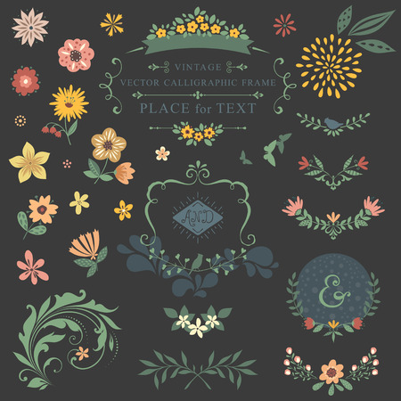 Floral graphic set with swirls, laurels, wreaths, branches, flowers, butterflies, bird and ampersands. Illustration