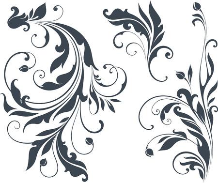 Ricciolo motivi ornamentali. Vettoriali
