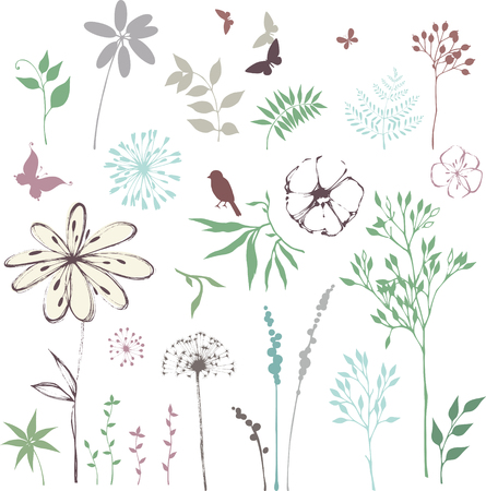 Hand drawn floral set with leaves, flowers, dandelion, grass, bird and butterflies.