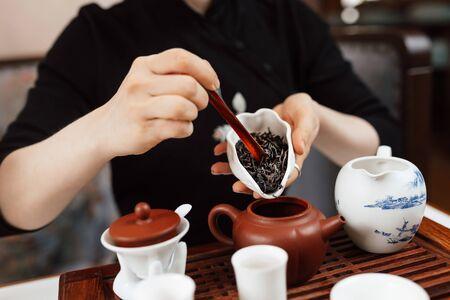 Chinese tea ceremony. Girl pours tea leaf into a teapot Zdjęcie Seryjne