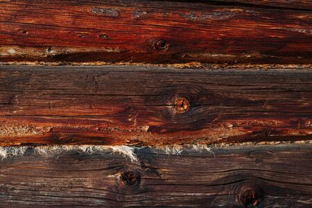 background texture. Close up. Part of the wall of a log house. Wooden background.