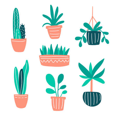 Vector illustration with home plants collection set. Cute doodle plants growing in pots. Green home gardening concept for decor, design, poster, blog. Plants are friends. Cacti and succulents doodle