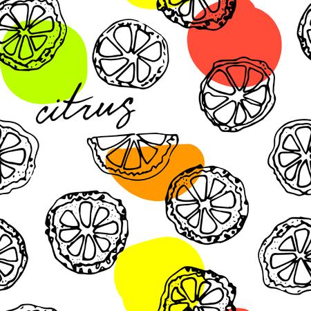 lemon slice: Sketched citrus fruits, lemon slice, calligraphy citrus.