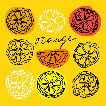 Sketched citrus fruits, orange slice, calligraphy citrus.