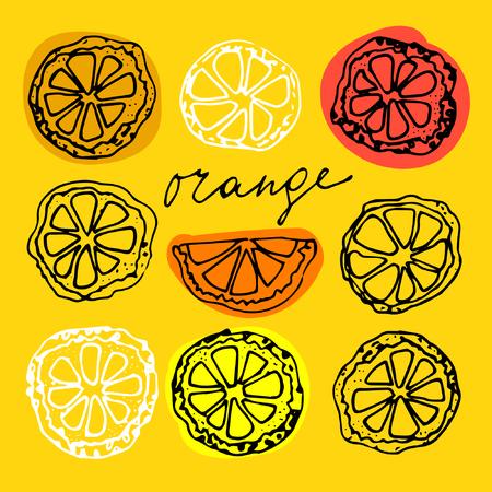 Sketched citrus fruits, orange slice, calligraphy citrus.
