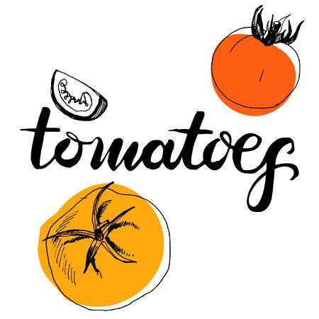 tomates: caligrafía, palabra, tomates y tomates de boceto