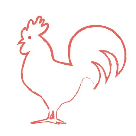 Vector linear image of an cock on white background. Red Rooster