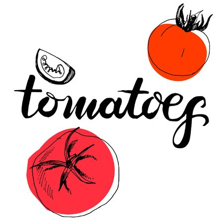 Calligraphy word tomatoes and sketched tomatoes