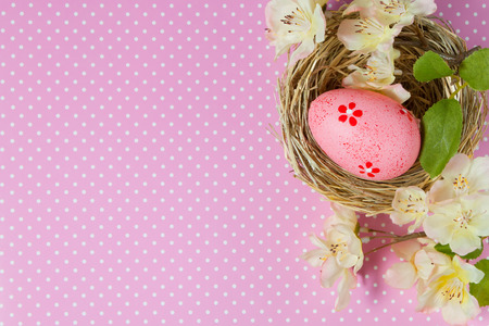 polka dots background: Easter egg in the nest and blossoming branch on a pink polka dots background