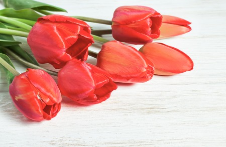 top 7: Red tulips on white wooden table. Top view.