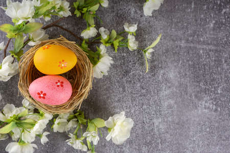Colorful easter eggs in nest and blossoming branch on grey concrete background
