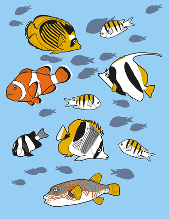 fishes: coral fishes Illustration
