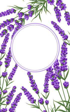background of purple lavender flowers, watercolor style flowers. elegant flowers. vector backgroundlavender background for text, greeting card, invitation, banner, business cards, template.