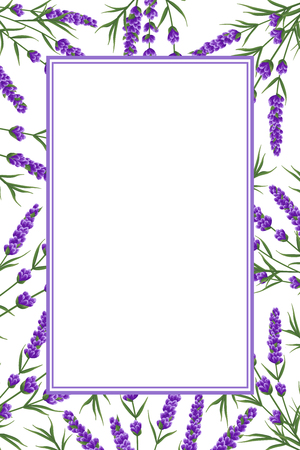 background of purple lavender flowers, watercolor style flowers. elegant flowers. vector background