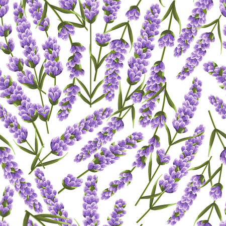 seamless pattern of purple lavender flowers, watercolor style flowers. elegant flowers. vector background