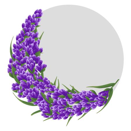 achtergrond van paarse lavendel bloemen, aquarel bloemen stijl. elegante bloemen. vector illustratie. ronde tekstachtergrond omlijst met lavendelbloemen kaartsjabloon, uitnodigingen, banner, visitekaartjes. Vector Illustratie