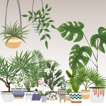 potted plants and flowers in different pots and planters. vector illustration in watercolor style. plants in the interior Ilustrace