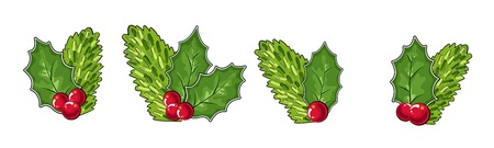 cones, leaves and cranberries, isolated objects. Vector illustration. Traditional Christmas decoration in flat design. vector illustration