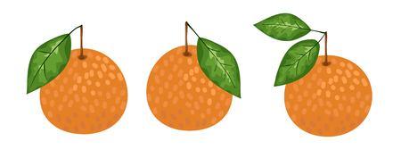 Tangerine or mandarin orange citrus fruit with leaf flat vector color icon for apps and websites. vector illustration