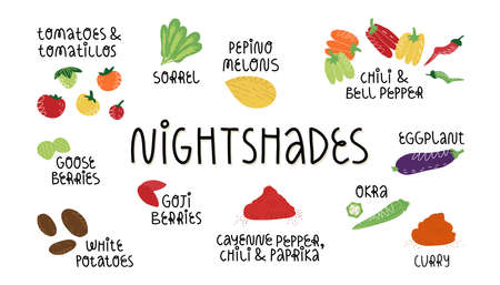 Nightshades vegetables, fruit and spices which is needed to be avoid on AIP, FODMAP diet, anti-inflammatory nutrition.
