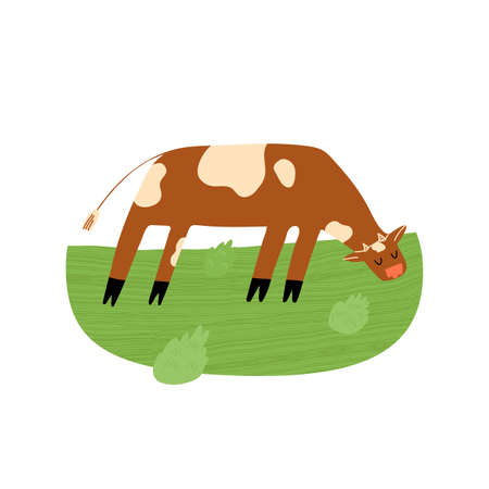 A cute cow on the field eats the grass. Idealistic picture of organic food production and farmer dairy. Ilustração