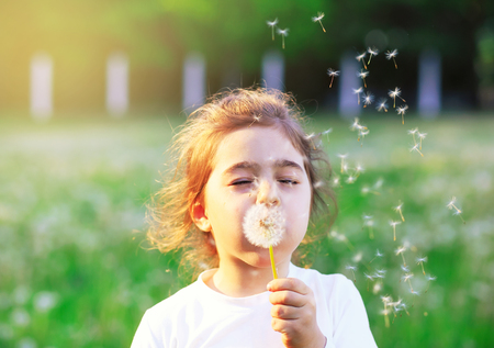 Beautiful little Girl blowing dandelion flower in sunny summer park. Happy cute kid having fun outdoors at sunset.