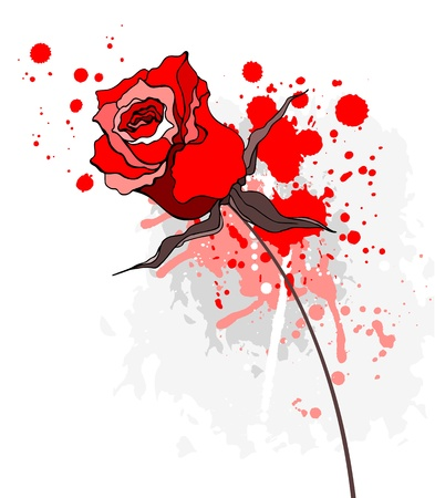 roses and blood: Grunge red rose on a white background Illustration