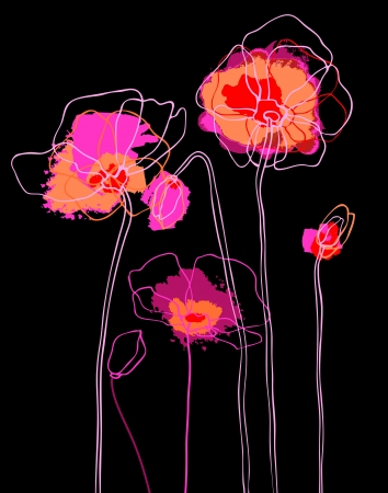 poppy leaf: Pink  poppies on a black background