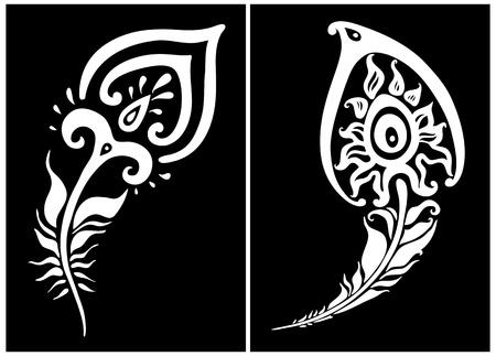 plumage: Beautiful peacock feather  vector illustration Illustration