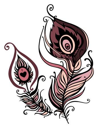 pluma de pavo real: Plumas de pavo real hermoso ilustración vectorial