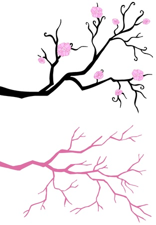 Branch in bloom  isolated on white background Stock Vector - 12961422
