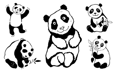 Five pandas  Vector illustration Isolated over white  Vector