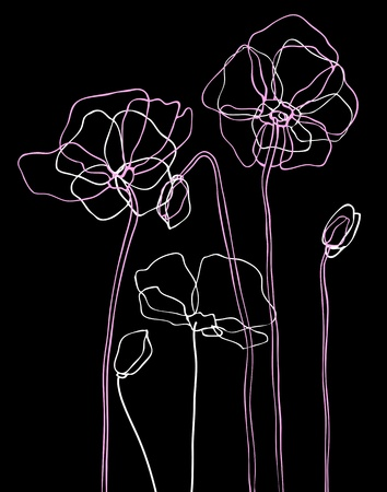 at ease: Pink poppies on black background  Vector illustration Illustration